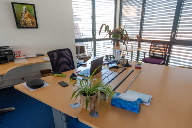 Le bureau du GEM